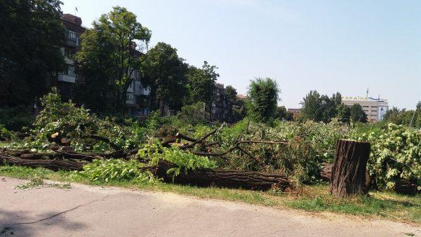 «Пропустили» вырубку деревьев в сквере Яланского: запорожские политсилы обвиняют друг друга