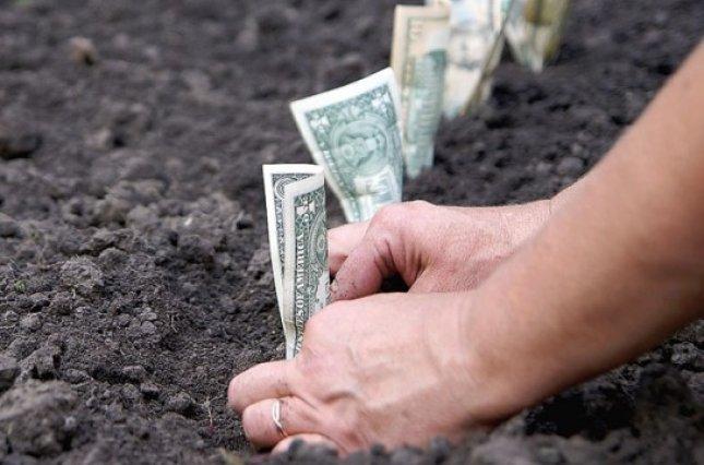 У Запорізькій області заплатили мільярд податку на землю – найбільше отримало Запоріжжя