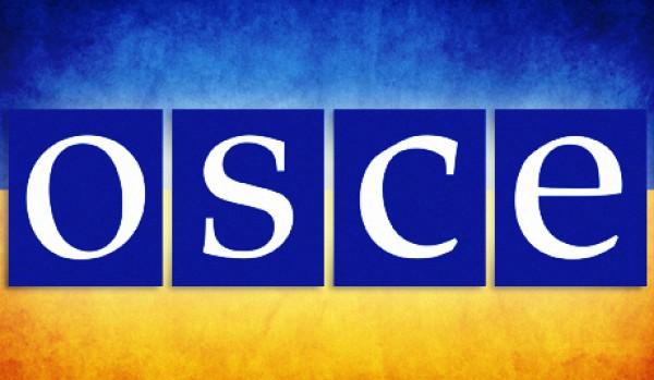 Четыре страны пожалуются на Украину в ОБСЕ