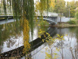 В этом году  завершат очистку озера в «Дубовой роще» и подготовят проект реконструкции парка