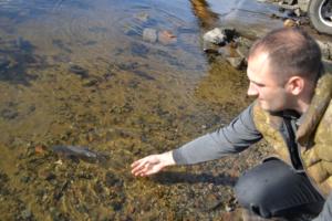В Каховское водохранилище выпустили 2 тысячи особей толстолибика