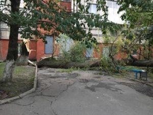 Последствия бури в Украине