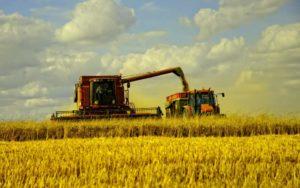 Правительство компенсировало аграриям деньги за покупку украинской сельхозтехники