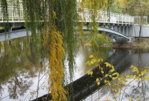 Власти Запорожья дополнительно выделят миллионы на благоустройство «Дубовки» и ландшафтного парка
