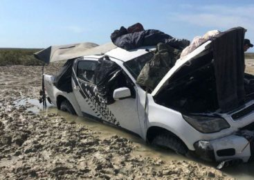 В Австралии двое мужчин и собака пять дней спали на крыше автомобиля из-за крокодилов
