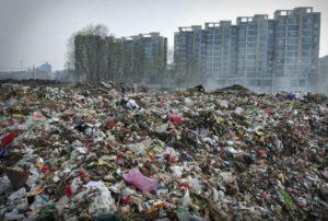 Загрязнение окружающей среды. Запорожская прокуратура добилась возмещения убытков, причиненных государству
