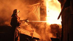 В Пологовском районе горел частный дом