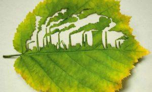 В Украине вступила в силу новая процедура оценки влияния на окружающую среду
