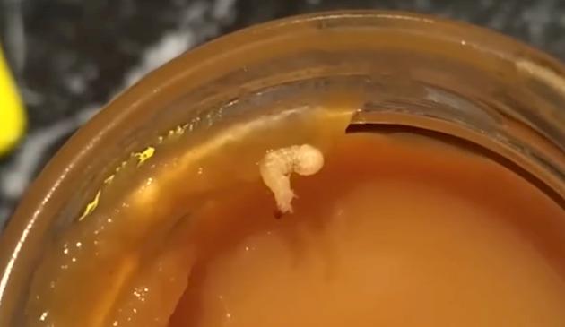 В детском питании родители нашли червя