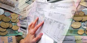 В Украине стартовал процесс монетизации субсидий