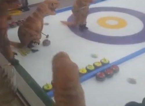 «Динозавры» играют в кёрлинг, — ВИДЕО