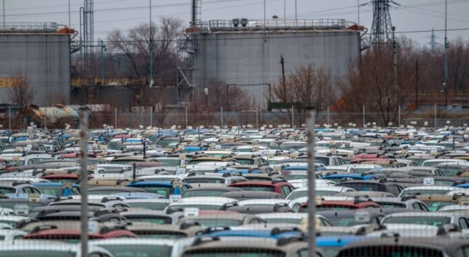 В Запорожской области прокуратура требует вернуть земельный участок, который незаконно сдали в аренду