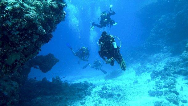 Пугающие звуки доносятся из глубины моря