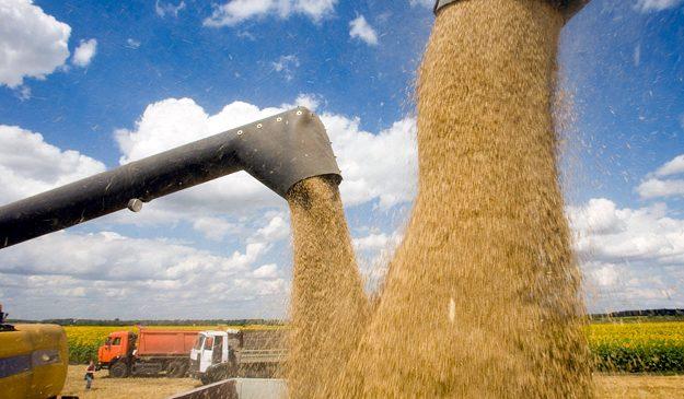 Что будет с урожаем и стоимостью продуктов в 2018 году