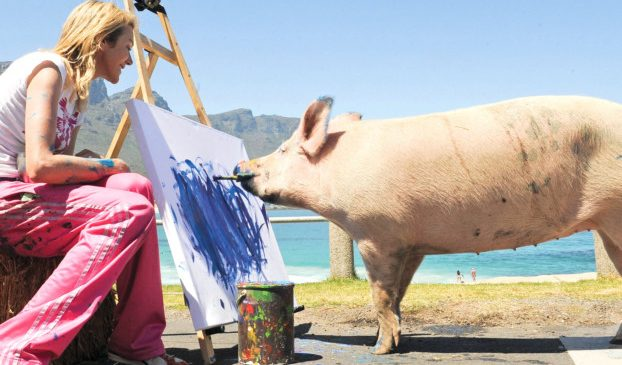 Свинки тоже умеют рисовать дорогие  картины, — ВИДЕО