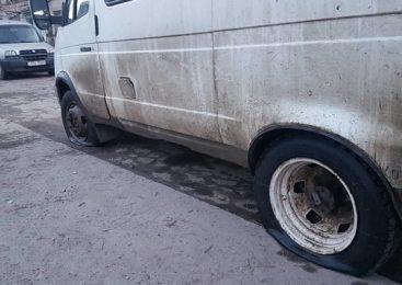 В Бердянске разъяренные зоозащитники разгромили «Газель» с бродячими собаками