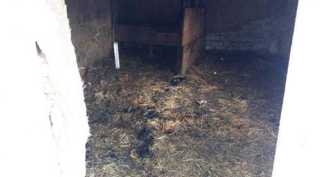 В Широком из-за неисправного обогревателя произошел пожар, — ФОТО