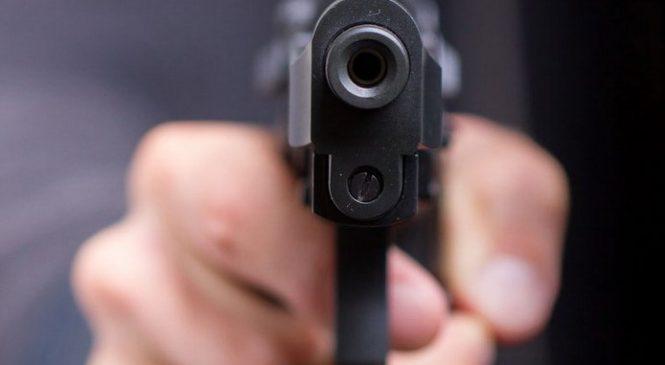 В массовых убийствах котов в Токмаке обвиняют депутата Оппоблока