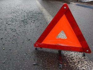 В Запорожской области водитель сбил двух стариков, разбил машину, а потом сбежал, — ФОТО