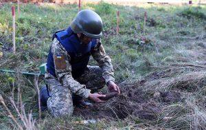 За один день спасателей-пиротехников вызывали в четыре села Запорожской области