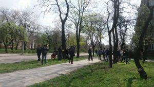 Суд приостановил решение исполкома Запорожского городского совета о вырубке 566 деревьев в парке в центре города