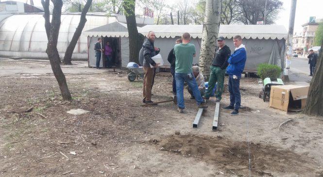 Депутат считает незаконным решение исполкома Запорожского горсовета о вырубке деревьев в парке в центре города
