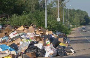 Мэр города в Запорожской области потребовал от коммунальщиков проводить уборки с 6 часов утра