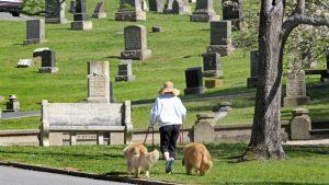 Мест на кладбище нет: запорожцы будут хоронить близких в парках и скверах