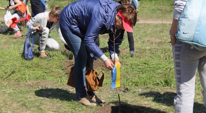 «Пам'ять нації»: на запорожскую Хортицу тысячи людей приехали садить дубы, – ФОТОРЕПОРТАЖ