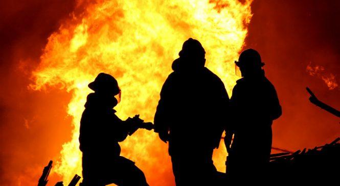 На Запорожской агропромышленной фирме произошел масштабный пожар
