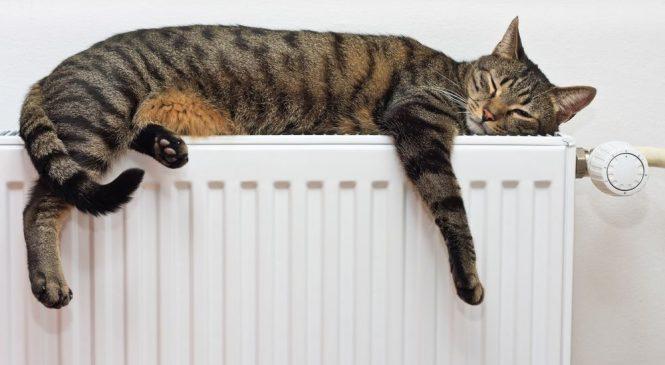В мэрии назвали дату прекращения подачи тепла в дома Запорожья