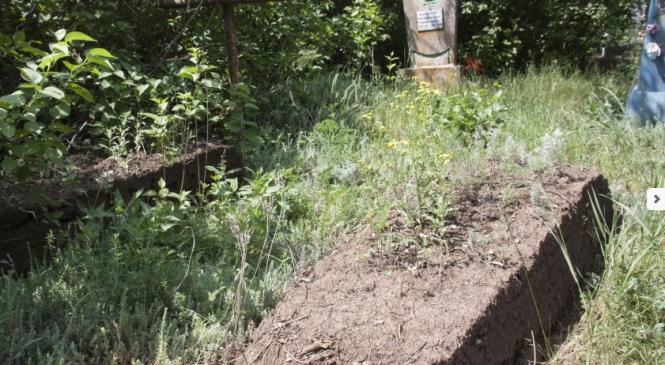 В Запорожской области на кладбище орудуют вандалы (Фото)