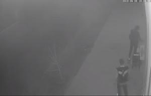 На Запорожском курорте просят опознать ночных хулиганов (Видео)