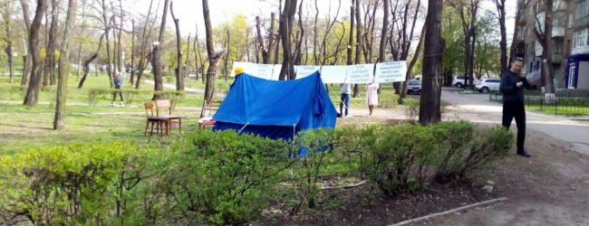 Срубят ли деревья под постройку нового ТЦ в Запорожье: суд рассмотрел иск