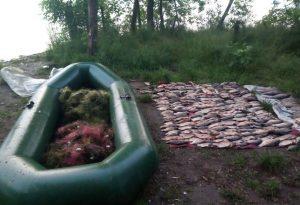 В Запорожье выявили почти 500 нарушений в сфере рыболовства