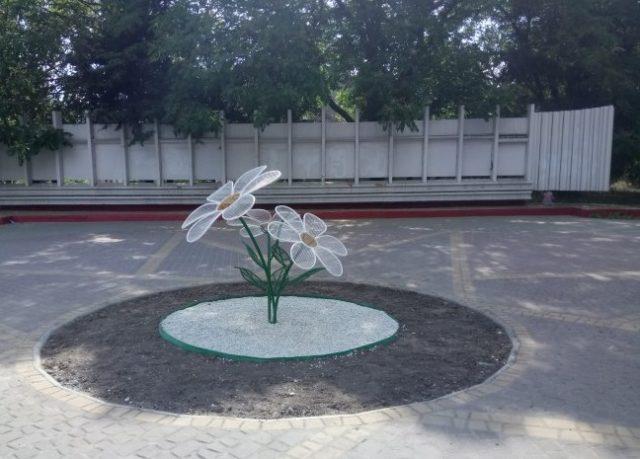 В Запорожской области появились необычные цветы (фото)
