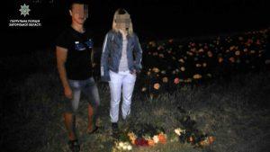 Ради любви: в Хортицком районе Запорожья вандал оборвал кусты с розами (Фото)