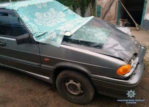 В Запорожской области пьяный водитель насмерть сбил двух пешеходов (Фото)