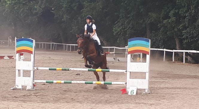 В Запорожье прошёл чемпионат по конному спорту