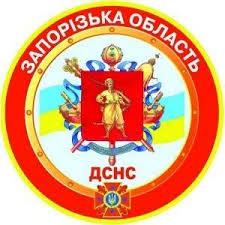 В Запорожской области спасатели ликвидировали пожар за 10 минут (фото)