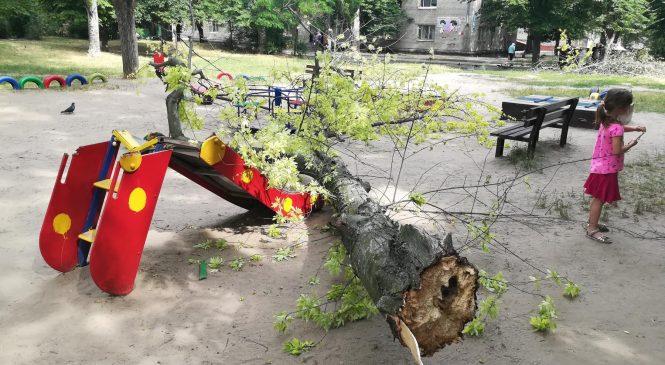 В Запорожье на Космосе дерево упало посреди детской площадки (фото)