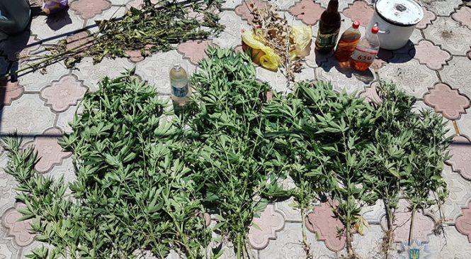 У Запорізькій області затримали двох наркоторговців, у них вилучили товару на півмільйона гривень (фото)
