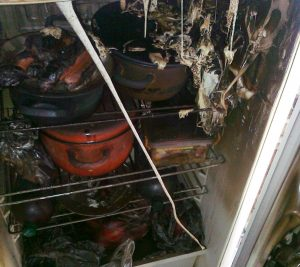 В Запорожской области из-за неисправного холодильника спасали семью с ребёнком (ФОТО)