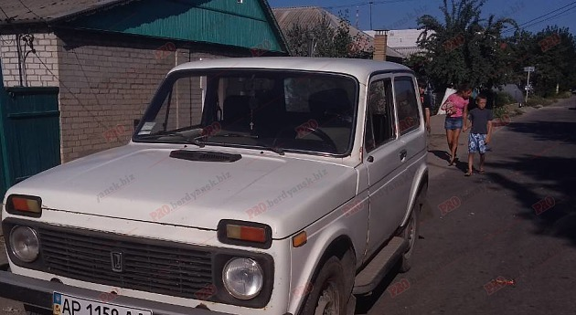 У Запорізькій області дитина потрапила під колеса автівки (фото)