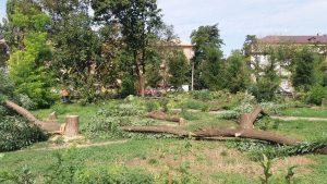 Вырубка деревьев — это ещё не всё: фирма Владимира Кальцева анонсировала план работ в запорожском сквере Яланского