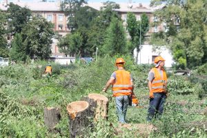 Участники акции протеста против вырубки деревьев в сквере Яланского снесли забор, поставленный застройщиком — ВИДЕО