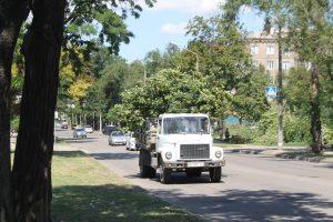 В Запорожье продолжают зачистку сквера Яланского: территорию готовят для строительства ТРЦ, – ФОТОРЕПОРТАЖ