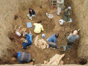 В Запорожской области археологи нашли захоронение эпохи поздней бронзы (Фото)