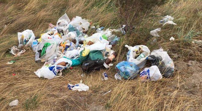 «Стекло, пластик и куча всякой гадости»: в сети показали, как выглядит запорожский курорт после отдыхающих (Фото)
