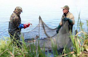 За месяц рыбоохранный патруль в Запорожской области обнаружил 95 нарушений ущербом в около 50 тысяч гривен